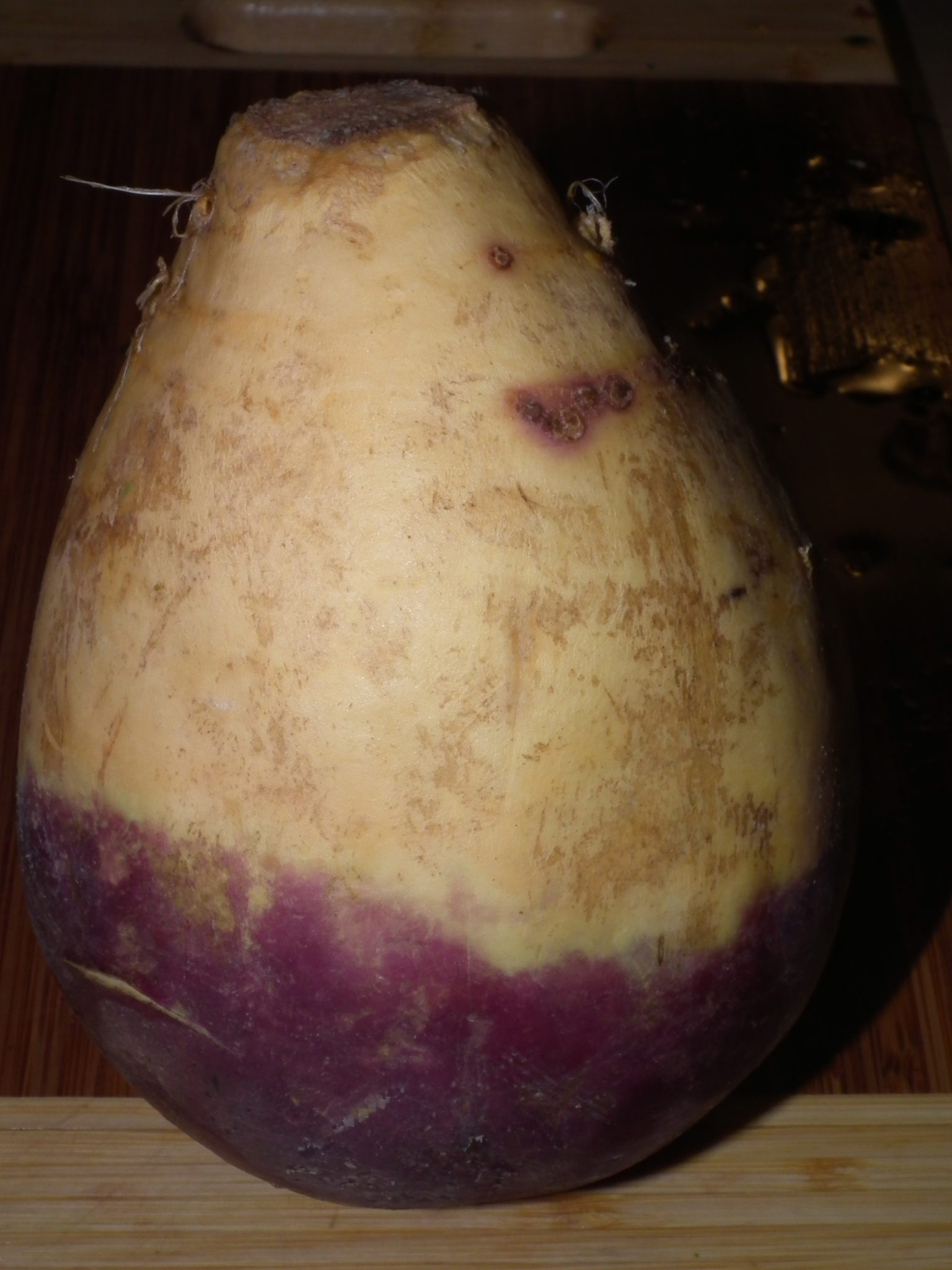 Health Bite: Rutabaga (…ugly but delicious!)