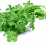 Health Bite: Cilantro